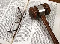 Подготовка судебной документации