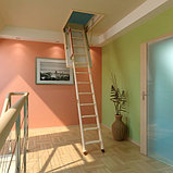 Чердачная лестница 60х140х305 FAKRO Комфорт, фото 2