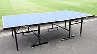 Теннисный стол Double Fish (для помещений с колесиками) + сетка, фото 1
