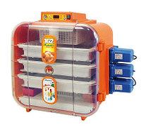 Novital Covatutto 162 Digitale Automatica Инкубатор бытовой автоматический переворот для яиц