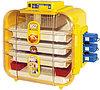 Novital  Covatutto 162 Automatica Инкубатор бытовой автоматический переворот для яиц