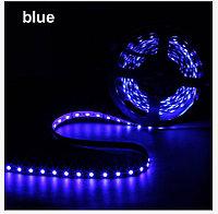 Яркая светодиодная лента SMD 5050  синяя