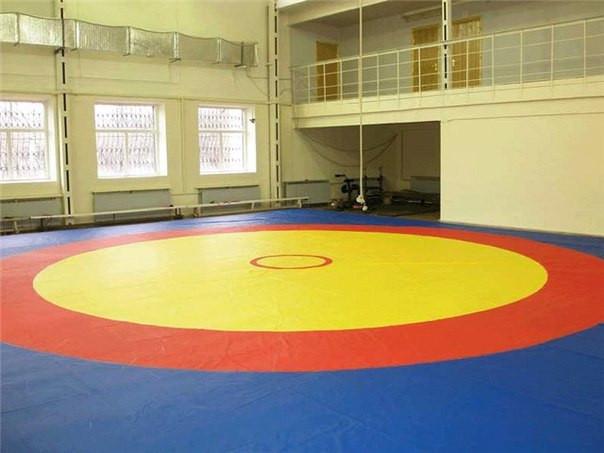 Ковер борцовский трехцветный (покрышка) 10х10м соревновательный