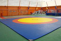 Ковер борцовский трехцветный 8х8м с покрышкой, толщина 5 см, фото 2