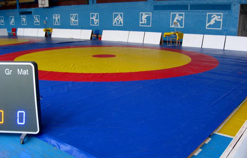 Ковер борцовский трехцветный 12х12м с покрышкой, толщина 4 см