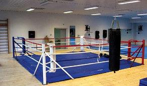 Ринг боксерский 4 х 4 м на растяжках, фото 3