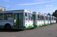 Бизнес-план по оказанию услуг пассажирских перевозок: автобусами, такси, авиа-перевозки