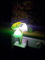 Сказочные грибы, фото 1