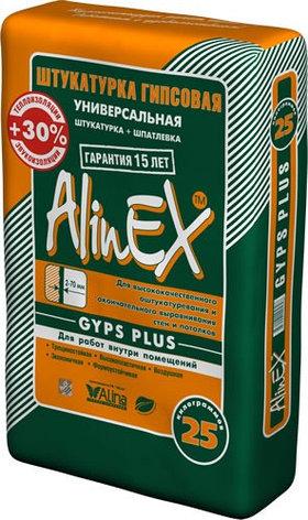 Шпатлевка черновая Глатт плюс (Alinex) 25 кг, фото 2