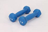 Гантели для фитнеса 1LB Blue