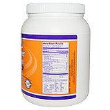 Лецитин подсолнечный, порошок, 454 г. (Sunflower Lecithin), Now Foods, фото 2