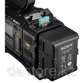 Sony AXS-A512S24 Карта памяти AXS серии A емкостью 512 ГБ с гарантированной скоростью записи 2,4 Гбит/с, фото 2
