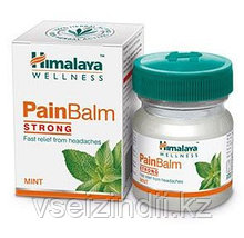 Бальзам Пэйн болеутоляющий, Гималаи (Pain Balm Strong, Himalaya), 10 мл