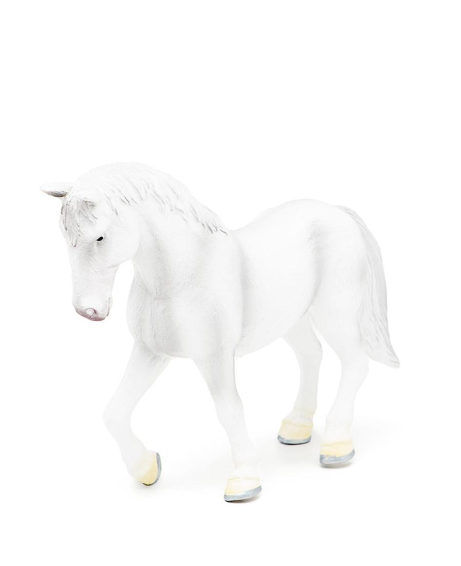 Mojo Липпицианская Лошадь