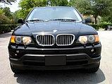 Ноздри Хромированные на BMW X5 E53 2000-2003, фото 2