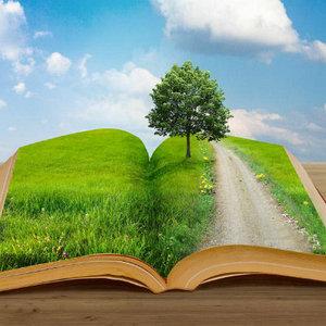 проектные и экспертные работы, экологическая документация