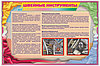Плакаты по Швейному делу