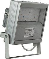 Светодиодный светильник (прожектор) Local 24, фото 1