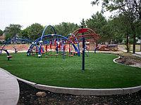 Газон для дачи и на детскую площадку