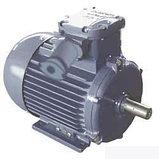 Электродвигатель АИР63В4 0,37 квт 1500 об/мин ВЗГ, фото 2