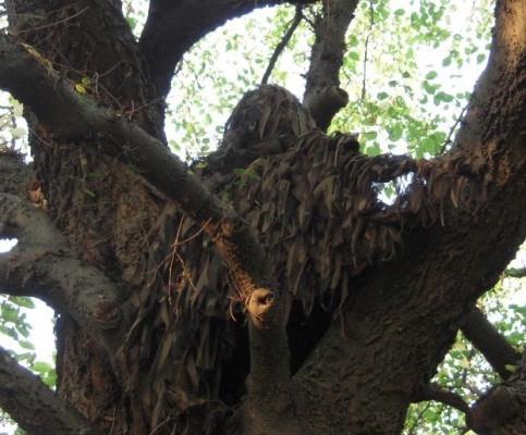 """Охотник на дереве  в  маскировочной накидке """"Леший"""""""
