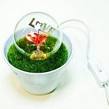 Светильник для влюбленых керамический, фото 3