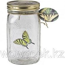 Светящиеся бабочка в баночке