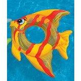Надувной круг Тропическая рыба 94*80см, Intex, фото 4