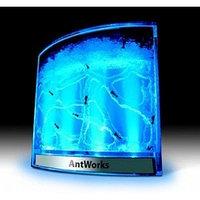 Муравьиная ферма Ants DreamWorks с подсветкой оригинальный подарок