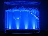 Муравьиная ферма Ants DreamWorks с подсветкой оригинальный подарок, фото 5