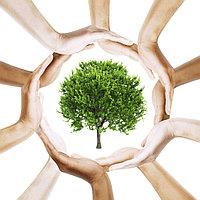 Экологическое проектирование и аудит