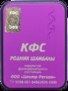 КФС «РОДНИК ШАМБАЛЫ», фото 5