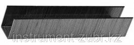 """Скобы тип 24, 8 мм, особотвердые, ЗУБР """"ПРОФЕССИОНАЛ"""" 31555-08, 1000 шт"""