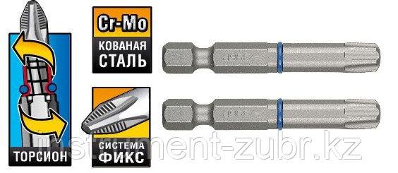 """Биты ЗУБР """"ЭКСПЕРТ"""" торсионные кованые, обточенные, хромомолибденовая сталь, тип хвостовика E 1/4"""", T30, 50мм, 2шт"""