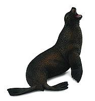 Collecta Фигурка Морской лев 11 см