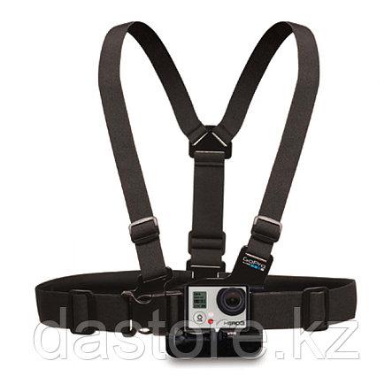"GoPro Крепление на грудь (Chest Mount Harness ""Chesty""), фото 2"