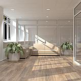 Дизайн-проект современного офиса, фото 4