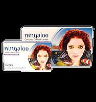 Цветные контактные линзы ningaloo (2 блистера)