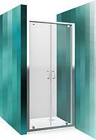 Душевая дверь распашная 2х секционная ROLTEHNIK LLDO2/900