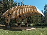 Дизайн-проект деревянных навесов для автомобилей, фото 3
