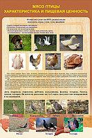 Плакаты Обработка птицы, фото 1