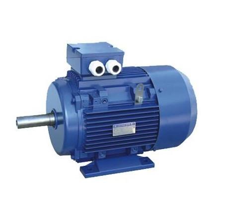 Электродвигатель на лапах