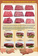 Плакаты по Кулинарии