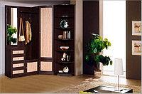 Шкафы, производство шкафов, гардеробы, прихожие на заказ в Алмате