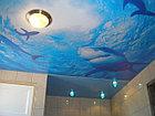Цветная печать натяжных потолков, фото 4