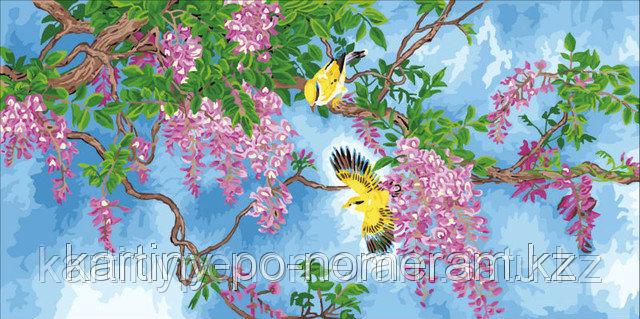 "Картины раскраски по цифрам (по номерам) ""Птицы в акации"""