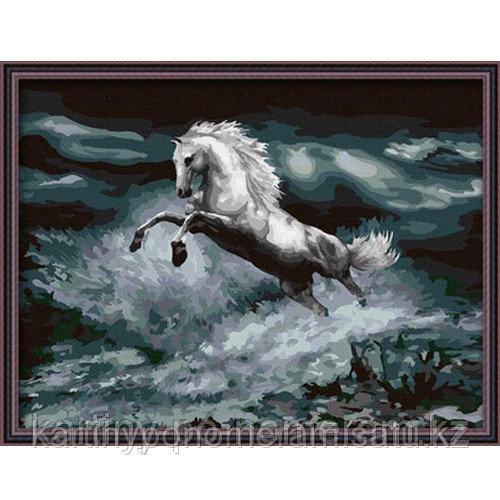 "Картины по номерам  - Алматы,  ""Белый конь 2"""