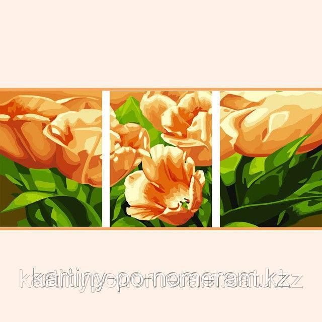 """Картины по номерам (цифрам) """"Тюльпан мечты"""", триптих"""