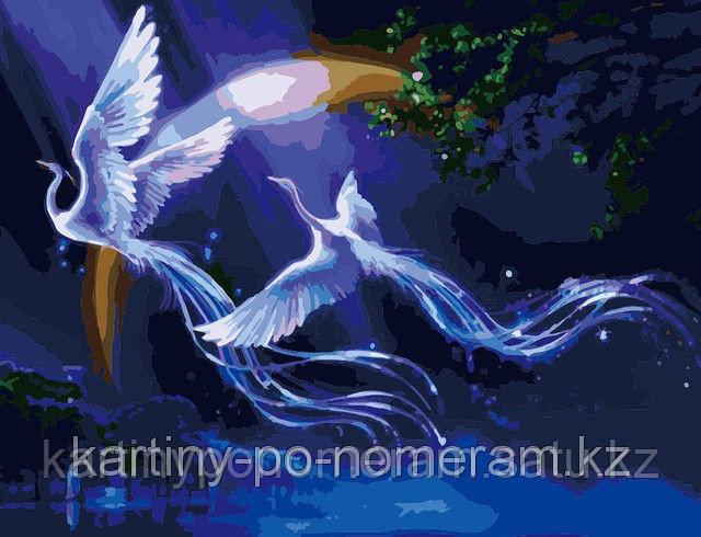 "Картины по номерам, цифрам  - Алматы,   ""Сказочные птицы"""