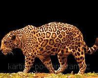 """Картины по номерам  - Алматы, """"Леопард в ночи"""""""